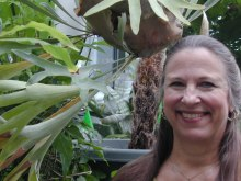 Jane-and-Staghorn